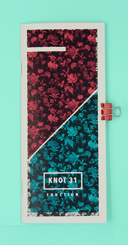 Knot 31 Research Project